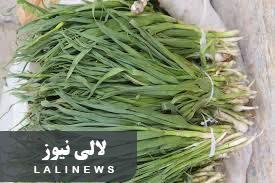 بیش از ۲۸۰ کیلو گرم گیاه اندشت در شهرستان لالی کشف شد