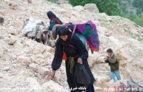 زیبایی های یک سفر سخت در کوچ عشایر بختیاری در پهنه زاگرس