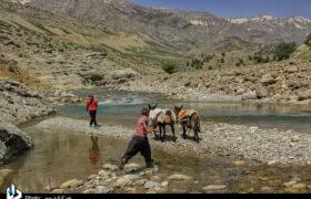 کوچ زیبای عشایر بختیاری/از لالی تا کوهرنگ