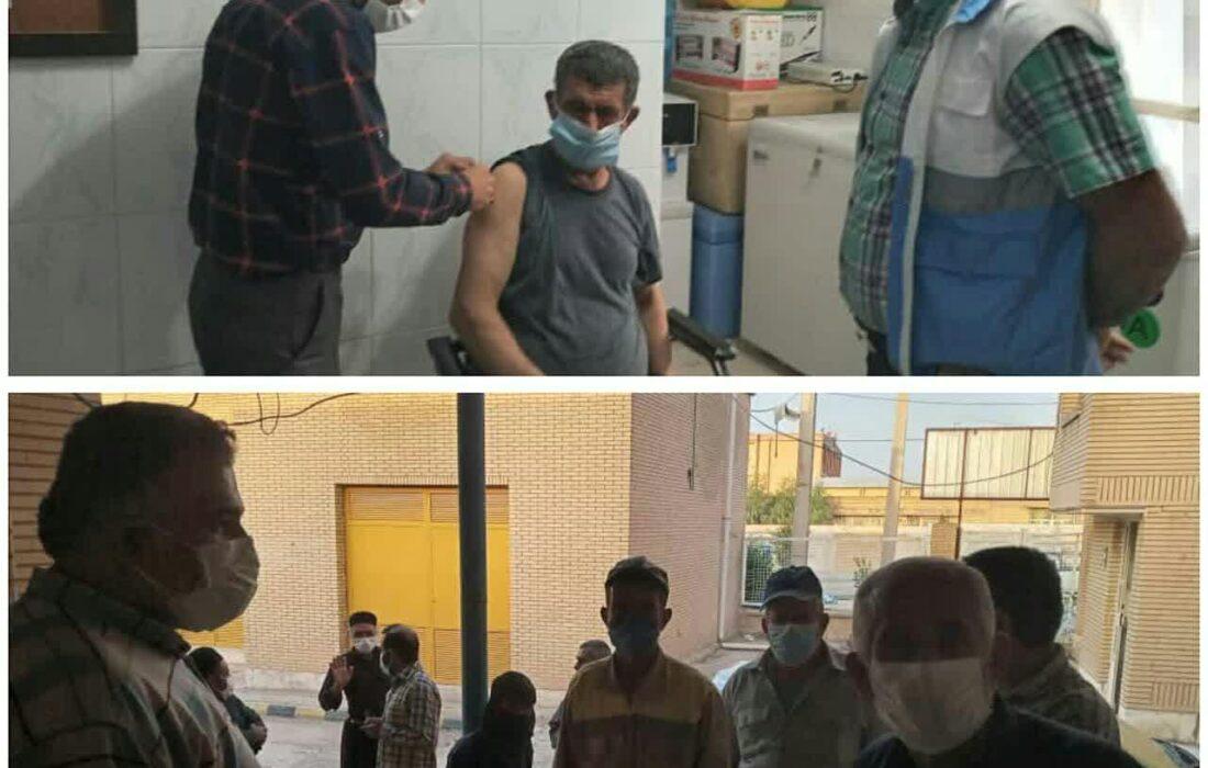 واکسیناسیون پاکبانان شهرداری لالی